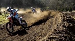 Dirtfarm Video